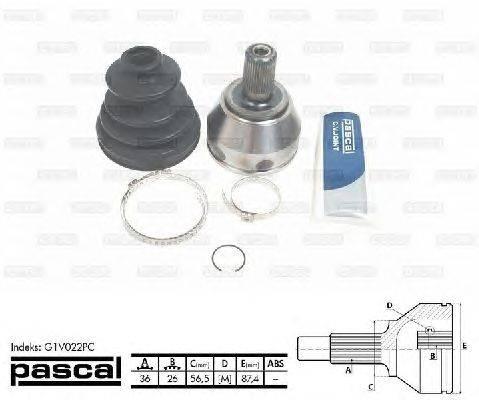 PASCAL (НОМЕР: G1V022PC) Шарнирный комплект, приводной вал